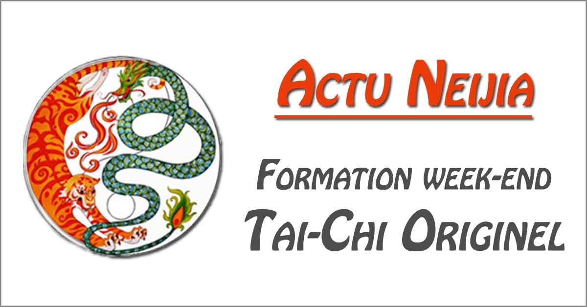Formation-Pro-Tai-Chi-Style-Chen-Prof-Enseignant-Originel