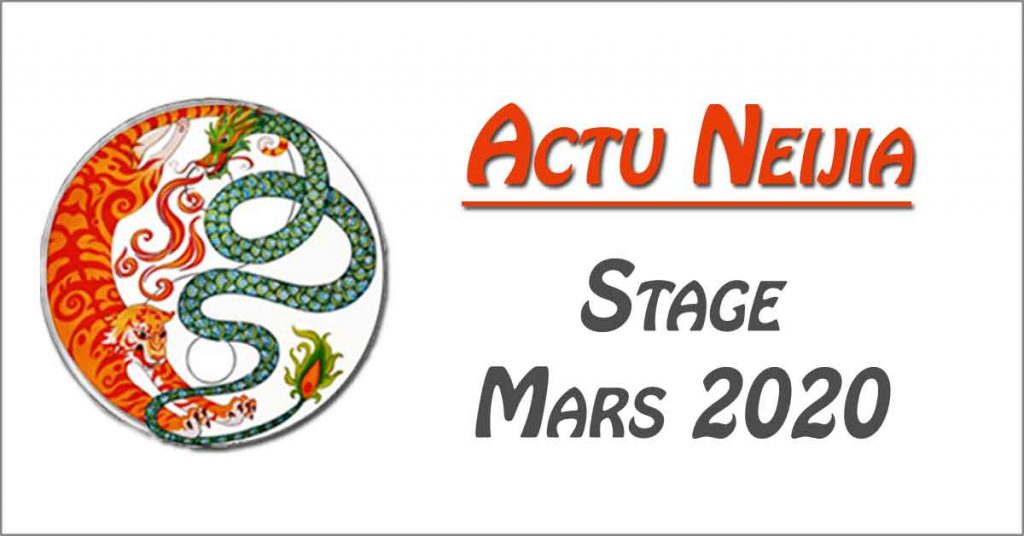 Stage-Tai-Chi-Annecy-style-Chen-2020-03